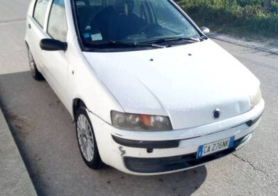 Fiat Punto 1.2i cat 5 porte Feel usata